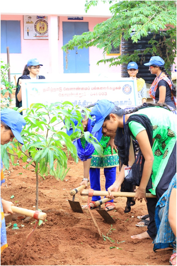 NSS - Tree Planting 2